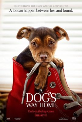 Movie: A Dog's Way Home - The Selfhelp Home
